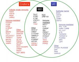 image of links between Crohns, IBD & UC